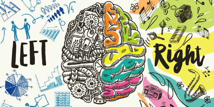 Left brain versus right brain - Macro Digital Trends