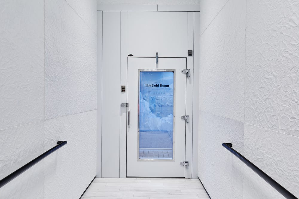 Canada Goose's new store has an ice-cold room for shoppers to try jackets on in.