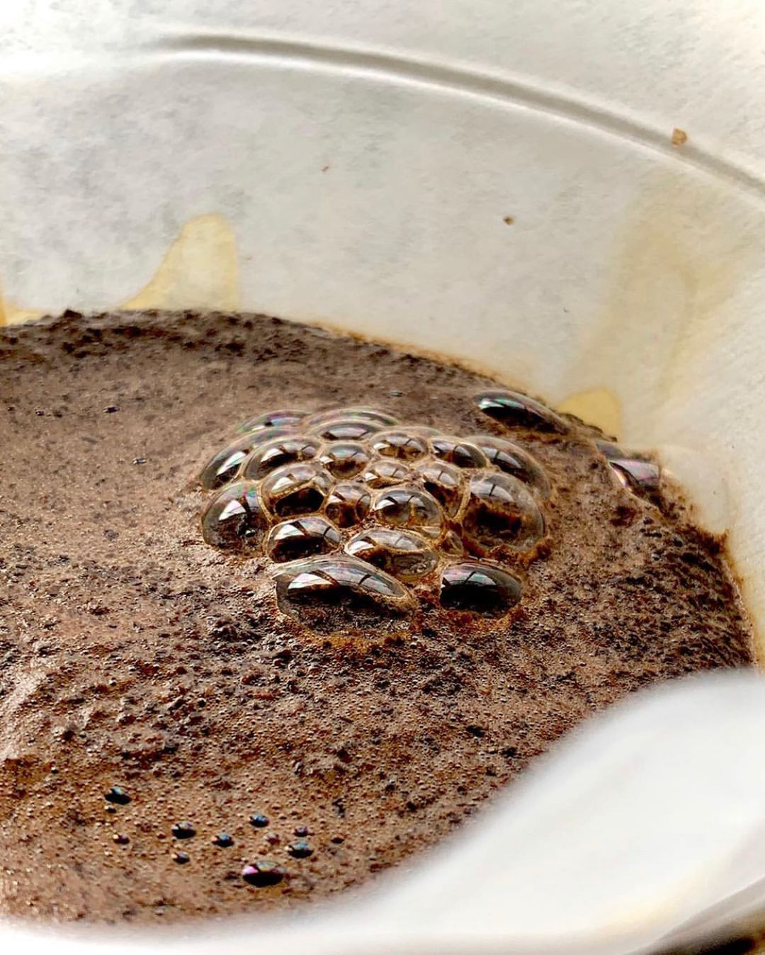 tight shot of coffee with bubbles as it is brewing