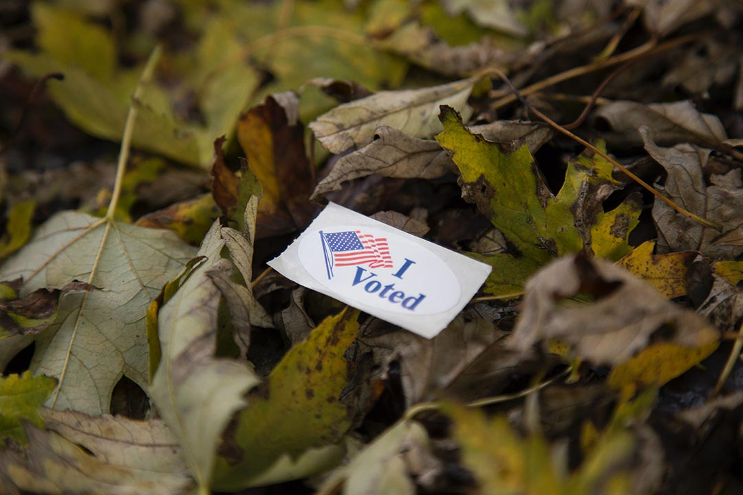 I voted sticker on leaves in the woods